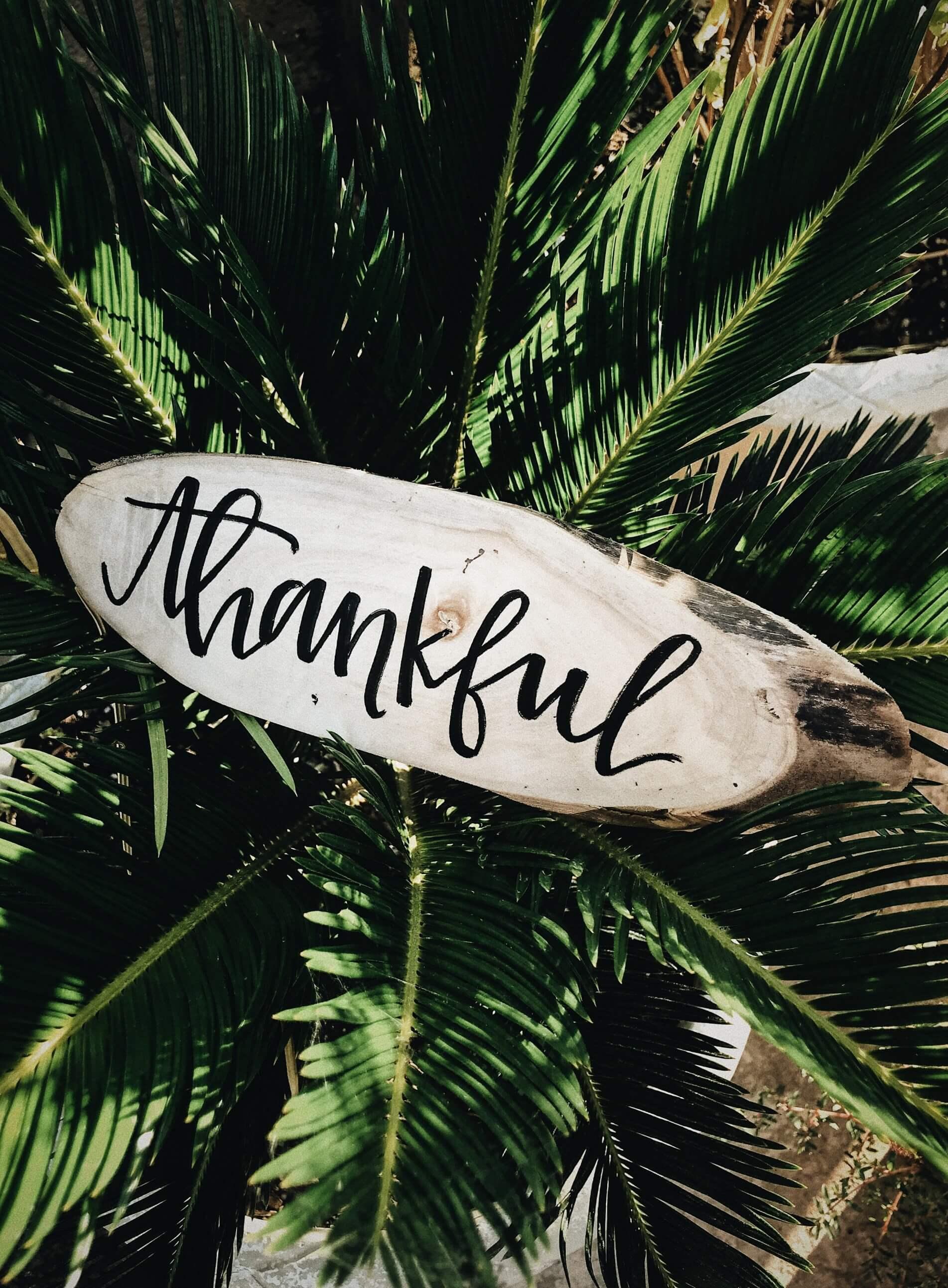 Thankful-Gratitude